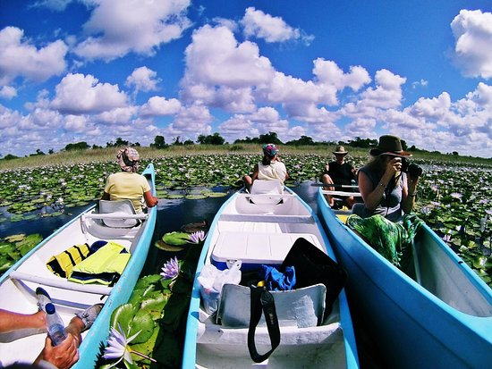 Vilanculos, Moçambique: Get Paddeled up into the Govuro Wetlands &Waterways