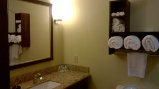 Holiday Inn Mobile - Airport: Bathroom pic 1