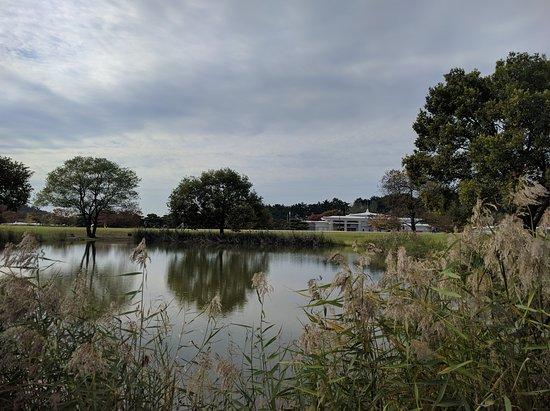 Iksan, Corea del Sur: 미륵사지의 호수
