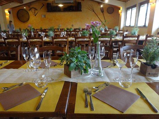 Apparecchiatura - Picture of Azienda Agricola Il Ciliegio ...