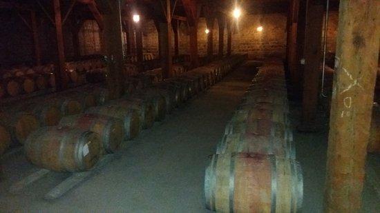 Santa Rita Winery: 20161122_130246_large.jpg