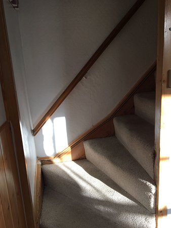 Sedgemoor Heights: bottom stairs