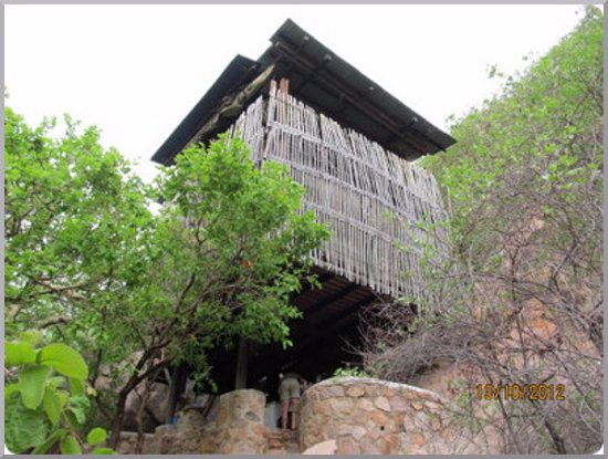 Mokopane, Sør-Afrika: The tree house