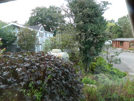 Kippford, UK: View from front of caravan - propane tank and cabin