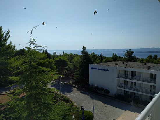 Bluesun Hotel Borak Image