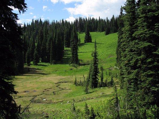 Revelstoke, Canada : onderweg naar Eva Lake