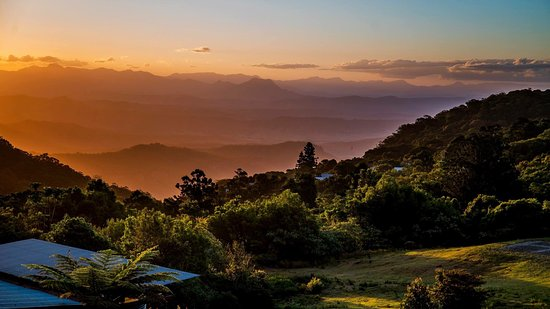 Lamington National Park, Australien: photo1.jpg