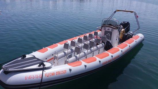 Sea Ribs 8 60 Pro 300cv Mercury 42 Knuts Picture Of