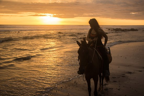 Mal Pais, Costa Rica: Horseriding at sunset on the beach...memorable experience!!!