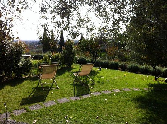 Zafferana Etnea, Ιταλία: Monaci delle Terre Nere grounds