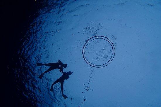 Tokashiki-son, Giappone: 海の底から輪っか海面を見上げて♪
