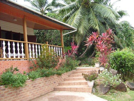 Le Grand Bleu: Accès terrasse de la villa sur grand jardin exotique.