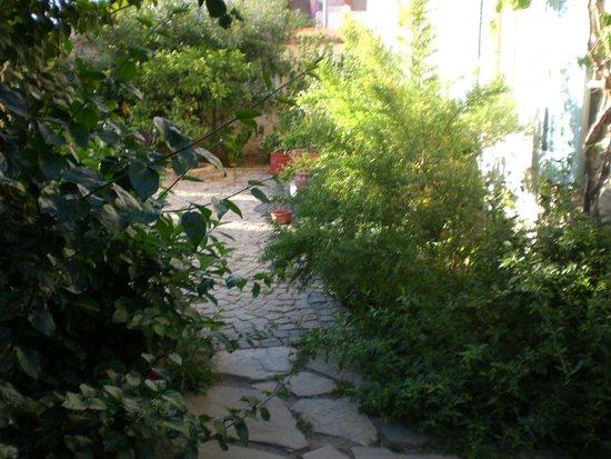 Incirliev Alacati: alaçatı incirli ev