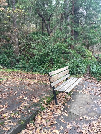 Ashland, Oregón: One of many benches, this on on an overlook.