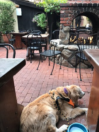 Dog friendly restaurant - Picture of Forge in the Forest Restaurant