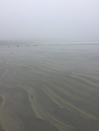 Ocean Mist Cottages: A very foggy day at low tide on the beach steps away from cottage