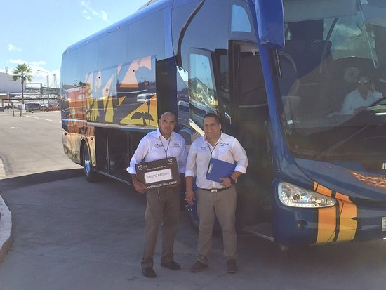 VIP Transportation Los Cabos: Our team waiting for VIP customers