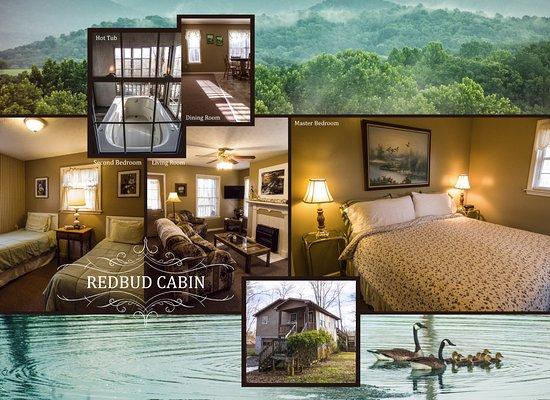 Greeneville, TN: The Redbud Cabin