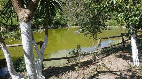 Omalos, Греция: Botanischer Garten