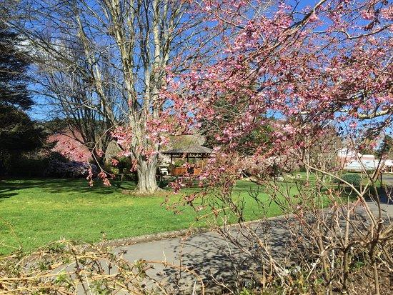 Invercargill, New Zealand: photo7.jpg