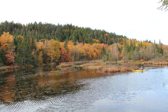 Stoneham-et-Tewkesbury, Canada: Можно поплавать и по осеннему озеру