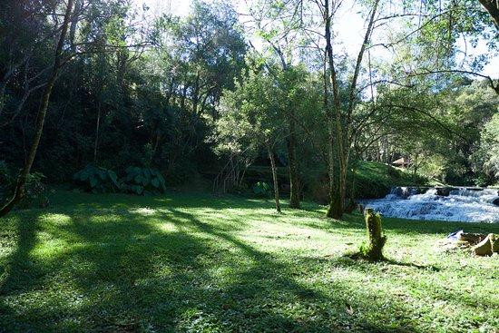 Prudentopolis, PR: area verde