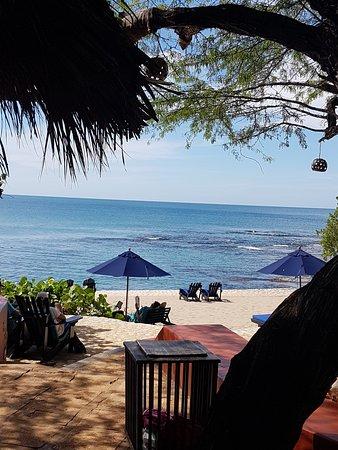 Treasure Beach, جامايكا: Serenity.