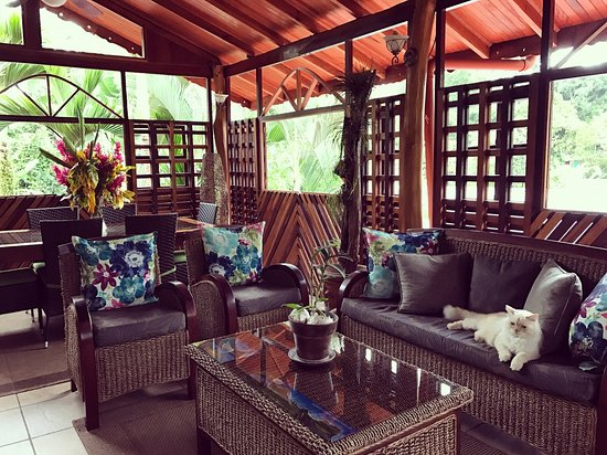 Cocles, Costa Rica: Physis Caribbean Bed & Breakfast