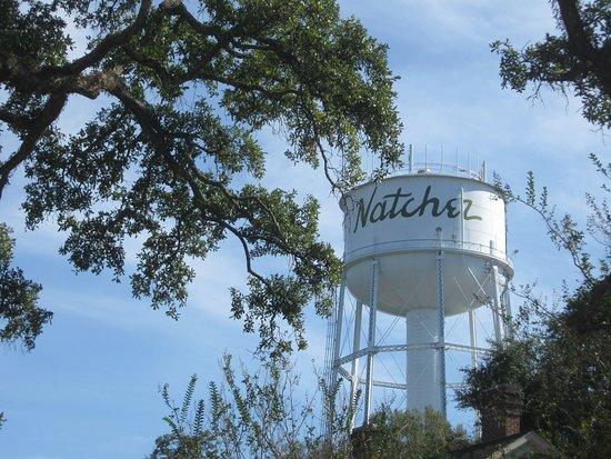 Natchez, MS: Water tower seen grom Stanton Hall Grounds
