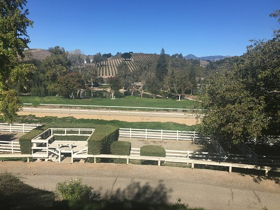 Santa Ynez, CA: Gorgeous views