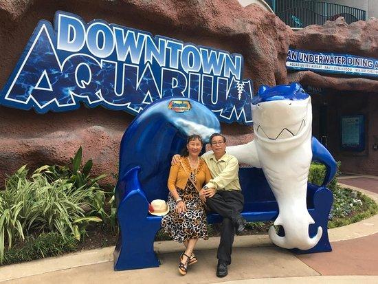 Downtown Aquarium: Đây là địa điểm tuyệt vời cho người lớn lẫn trẻ em.