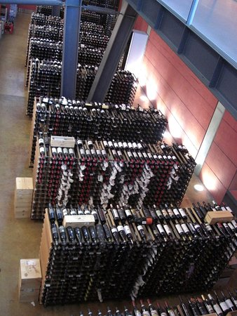 lots-of-wine-down-there.jpg
