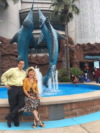 Downtown Aquarium: bên cạnh hồ nước phía trước cổng chính.