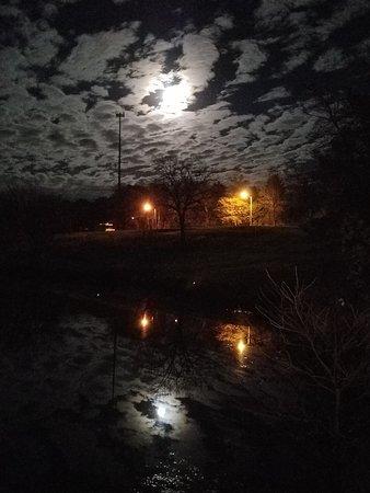 Lone Jack, MO: Paradise like Moon