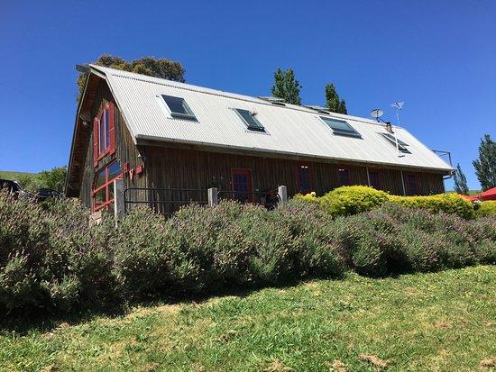 Healesville, Australia: Hanrahan Vineyard