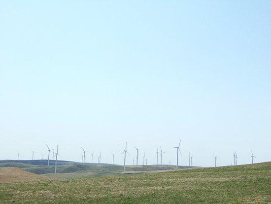 Wakkanai, Japan: 風車たち