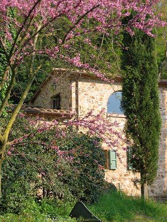 Роккатедериги, Италия: Fattoria di Peruzzo