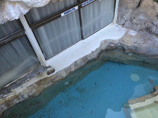 阿爾維達酒店照片