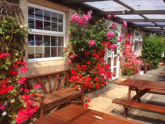 Kilkhampton, UK: Our beautiful annual flower display in front of the pub.