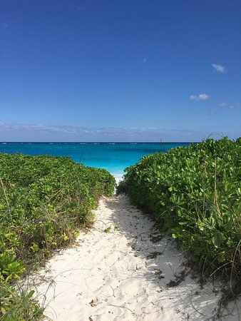 Governor's Harbour, Eleuthera: Path to the beach from Pascal's.