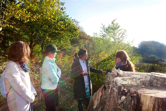 Voorburg, Países Bajos: A Nature Walk with your guide Hetty near The Hague