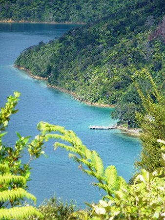Picton, Neuseeland: Top of the hill from Ships Cove