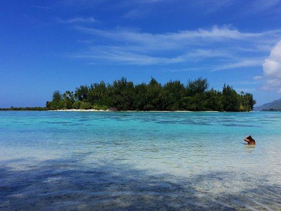 Moorea, French Polynesia: photo2.jpg