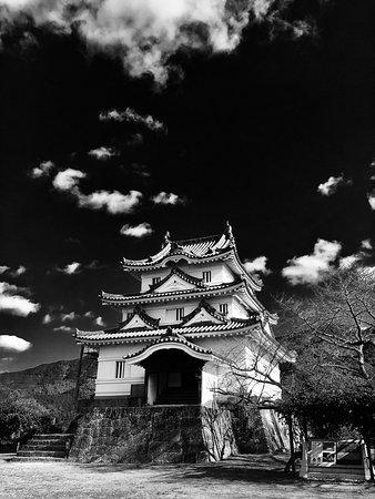 Uwajima, Japan: photo0.jpg