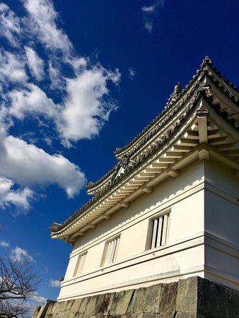 Uwajima, Japan: photo1.jpg