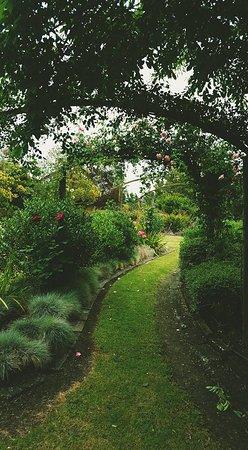 Clive, New Zealand: Secret Garden