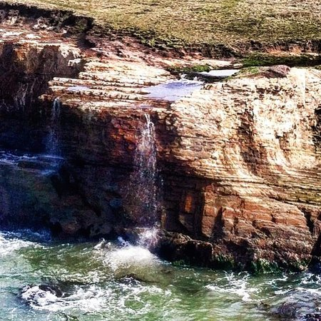 The Sea Ranch, Califórnia: Unbeaten Path Tours