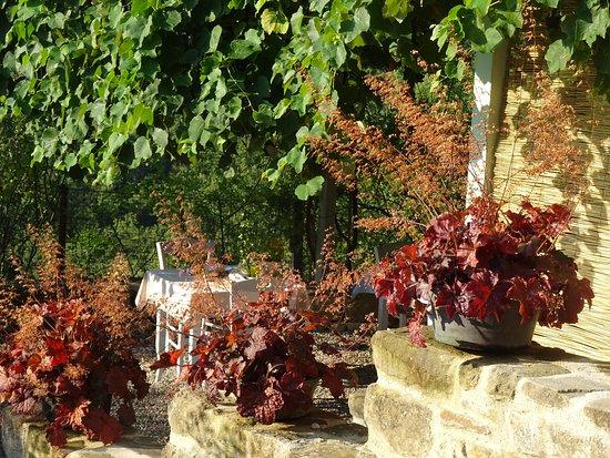Borgo di Carpiano Photo