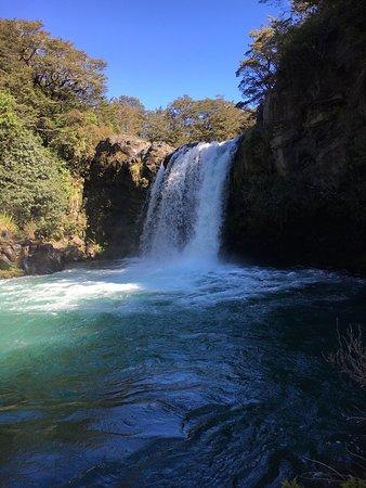 Национальный парк Виллидж, Новая Зеландия: photo1.jpg