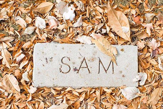 Sam Davis Home : Sam's Burial Marker